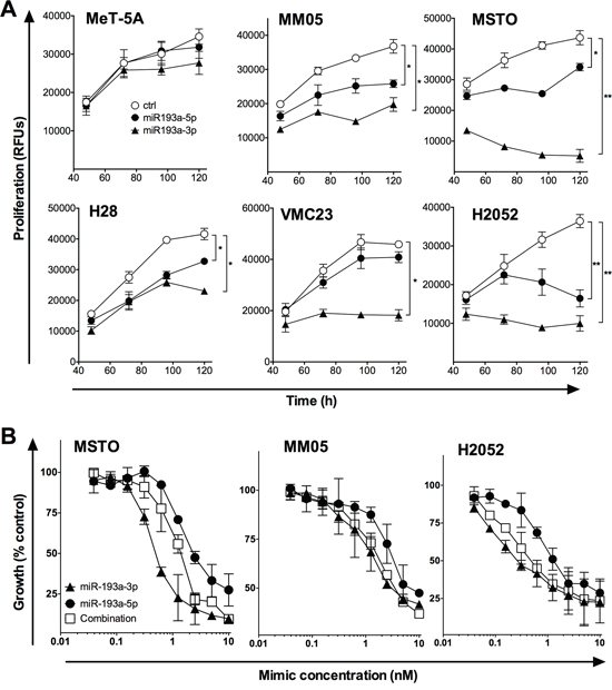 The effect of miR-193a-5p alone and in combination with miR-193a-3p on MPM cell proliferation.