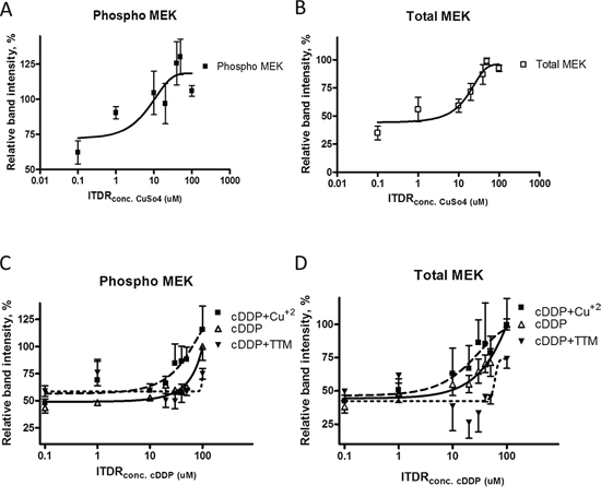 Thermal stabilization of pMEK1/2 and MEK1/2 by cDDP in whole cells and modulation by Cu and TTM.