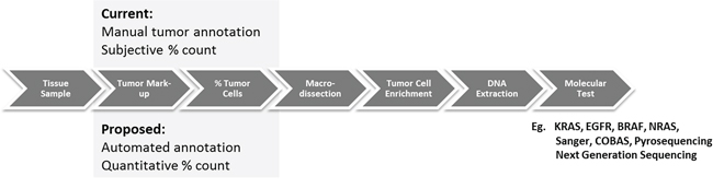 Comparison of current methods for macrodissection based on manual annotation (top) and the proposed automated tumor annotation for macrodissection (bottom).