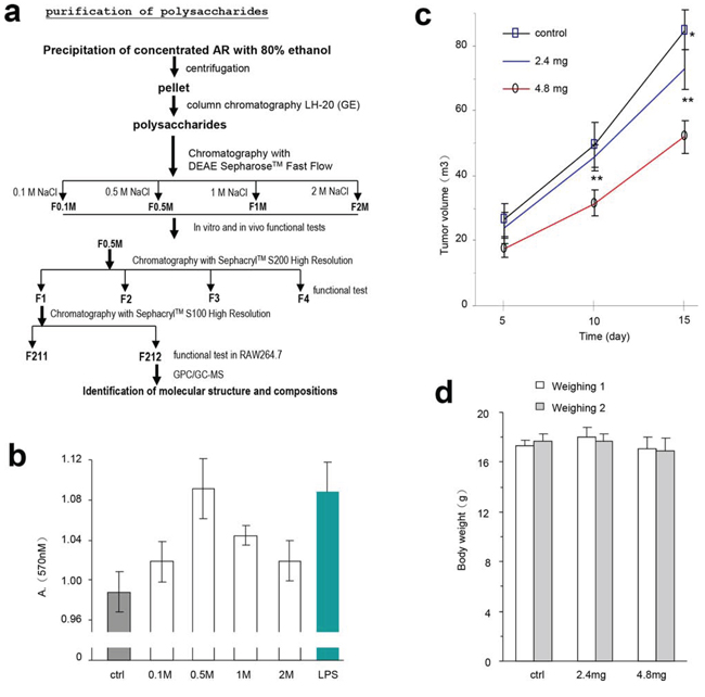 Partial purification of the polysaccharides and their effects on lymphocyte activity and tumor growth.