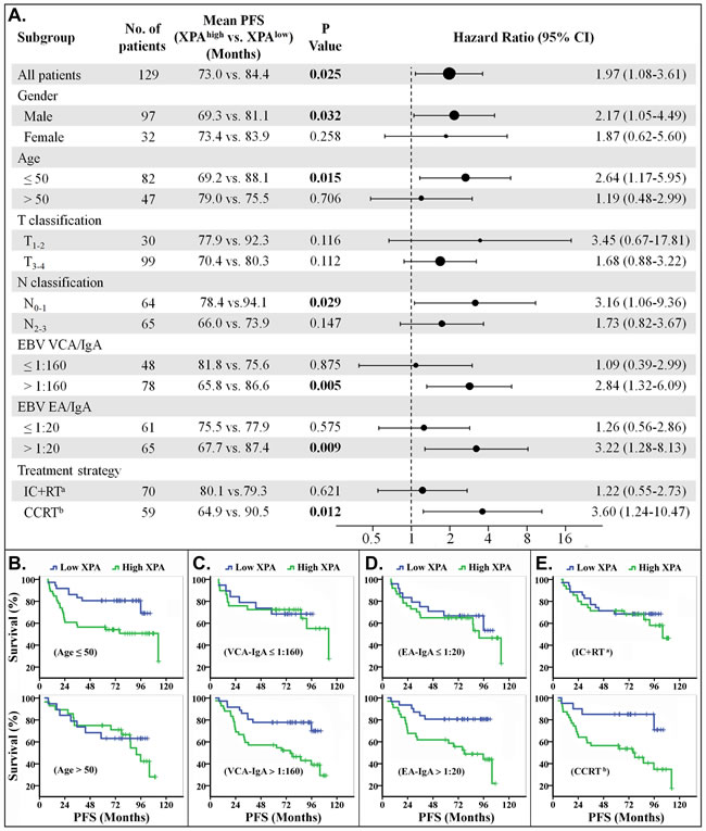 Stratified analysis for progression-free survival (PFS).