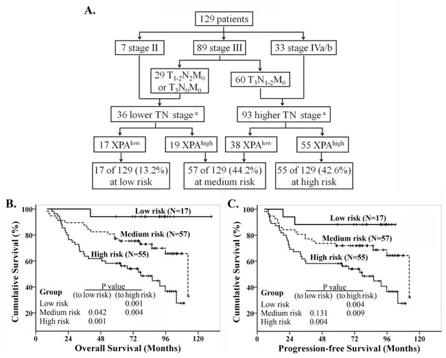 Recursive partitioning analysis of survival in all NPC patients.