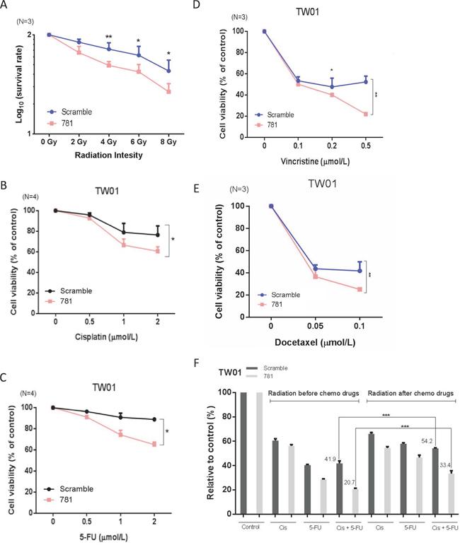 Silencing of annexin A2 (ANXA2) increases radio- and chemosensitivity in vitro.