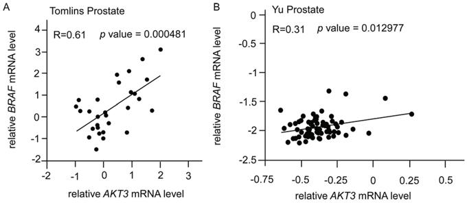 Correlation of gene expression levels of AKT3, BRAF, TSC1, and TSC2 in prostate cancer public domain database.