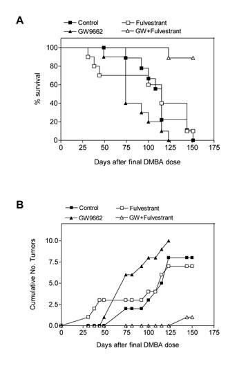 GW9662 enhances the sensitivity of mammary tumors to fulvestrant.