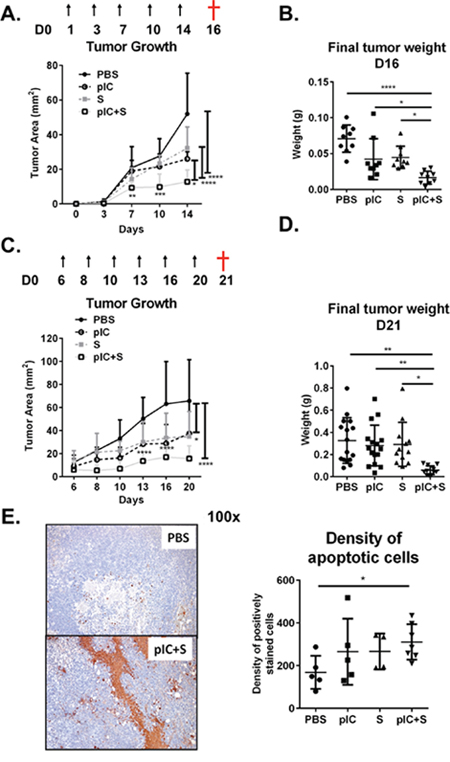 Combination of poly-ICLC and Sorafenib enhanced tumor control in mice.