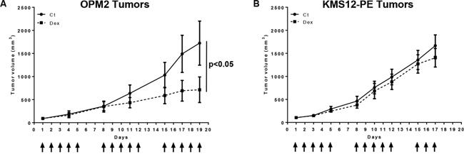 Dexamethasone reduces tumor cell growth of in vitro sensitive OPM2 but not resistant KMS12-PE cells in xenograft models.