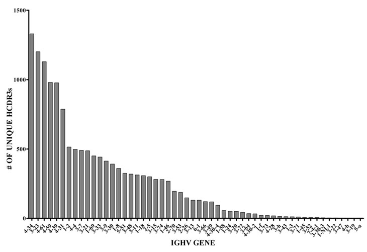 Number of unique HCDR3s and frequency of specific IGHV gene usage in normal BMPCs.