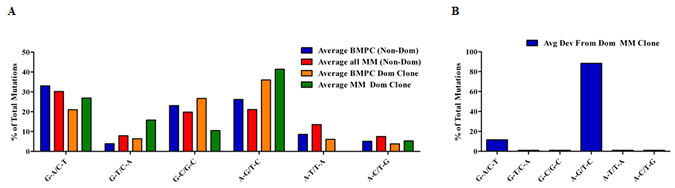 Characterization of mutations in BMPC and MM sequences.