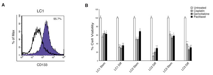 Characterization of lung CSCs and their resistance to conventional chemotherapeutic drugs.