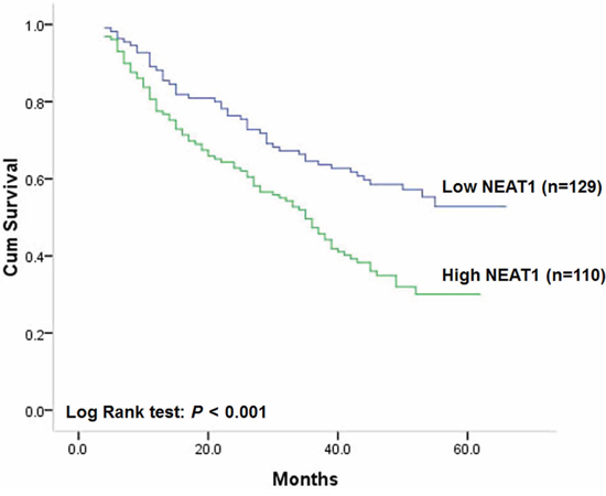 Correlation of NEAT1 expression with overall survival.