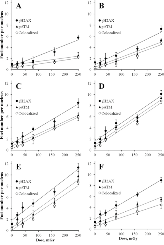 Radiation dose-responses for γH2AX and pATM foci in MSCs.