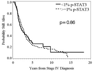 Kaplan-Meier survival estimates stratified by p-STAT3, expression determined from immunohistochemical staining, in patients with stage IV melanoma.