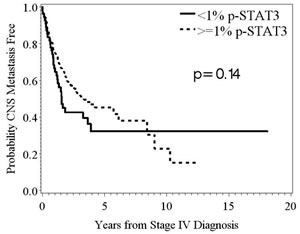 Kaplan-Meier survival estimates of the overall probability of developing CNS metastasis from the time of the stage IV diagnosis.