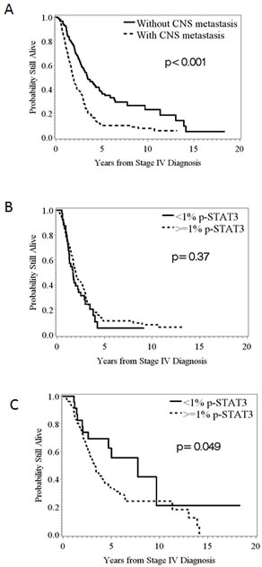 Kaplan-Meier survival estimates of the overall probability of survival from the time of the stage IV diagnosis.