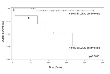 Correlation between the percentage of BCL2L10 expressing cells and OS in MDS or AML patients treated with AZA.