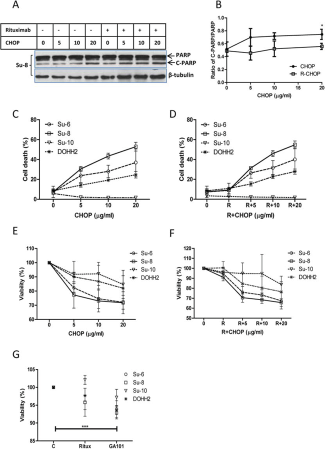 Comparison of CHOP and R-CHOP-induced killing in DLBCL cell lines.