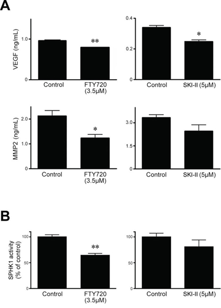 Effects of SPHK inhibitors SKI-II and FTY720 on levels of VEGF-A and MMP-2 and enzymatic activity of SPHK1 in HeLa cells.