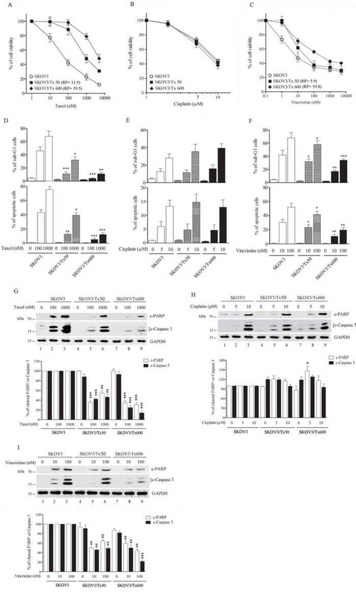 Establishment of txr cells.