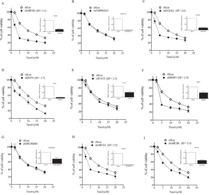 Silencing of txr genes causes taxol sensitization.