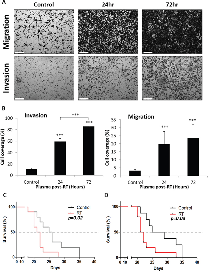 Host response to local radiation promotes tumor cell metastatic properties.