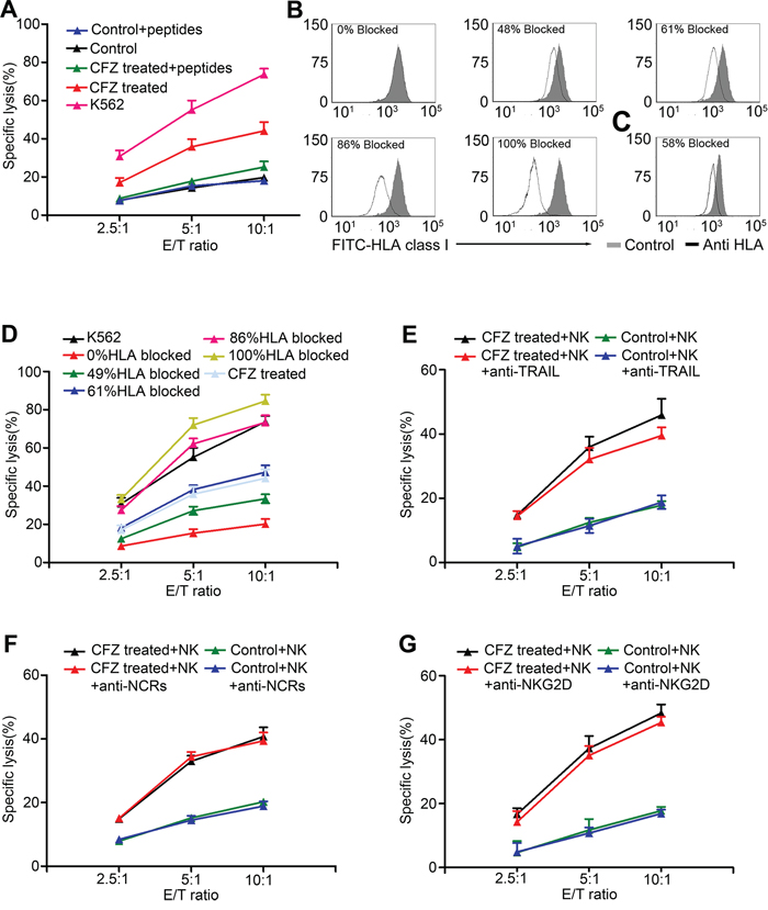 Enhancement of NK cell-mediated lysis was associated with down-regulation of HLA class I.