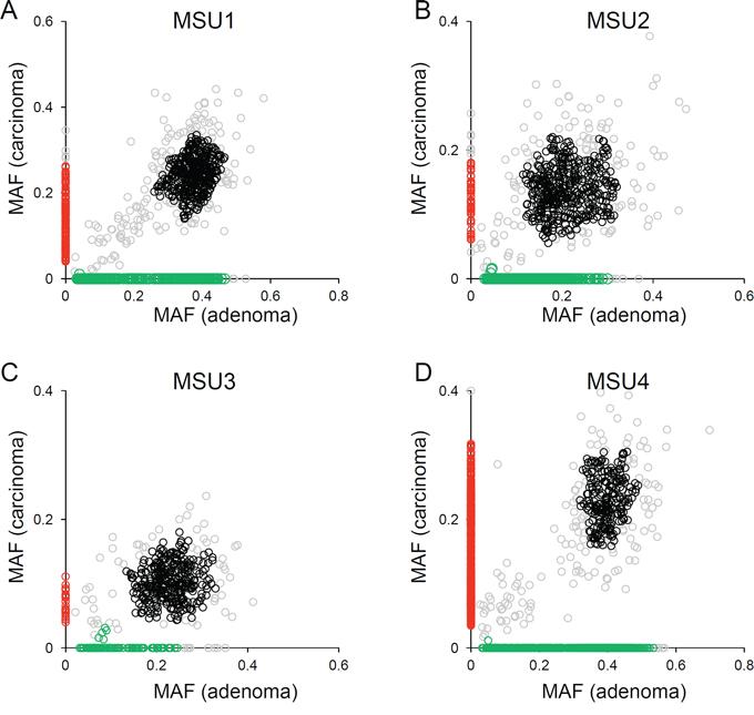 Clonal analyses using mutational abundance microsatellite-unstable genomes.