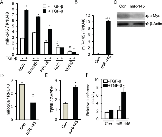 MiR-145 downregulates miR-20a and induces TßRII by targeting c-Myc.