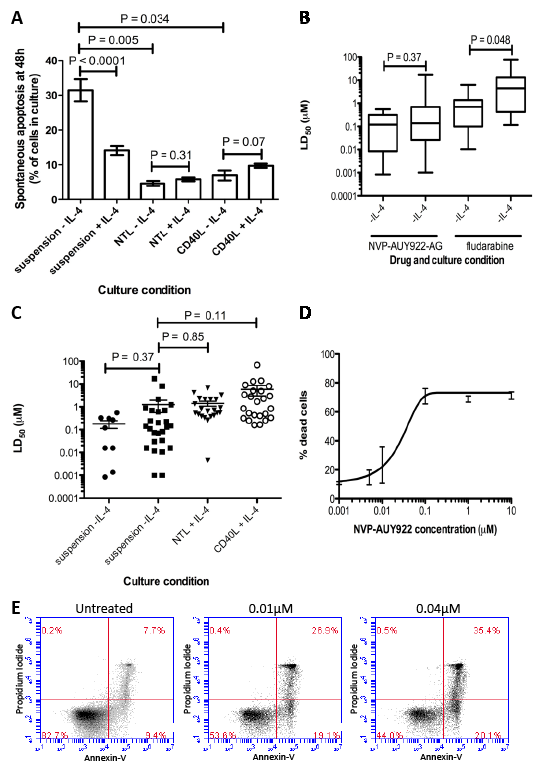 NVP-AUY922-AG is more cytotoxic that fludarabine, retains its activity in cytotoxic culture conditions and induces apoptosis in CLL cells in vitro.