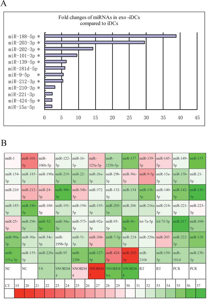 Exosome transfer PC-derived miRNAs to iDCs.