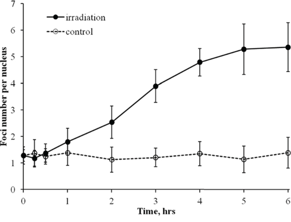 Formation of RAD51 foci in diploid normal human fibroblasts during continuous exposure to X-ray radiation at a dose-rate of 4.5 mGy/min.