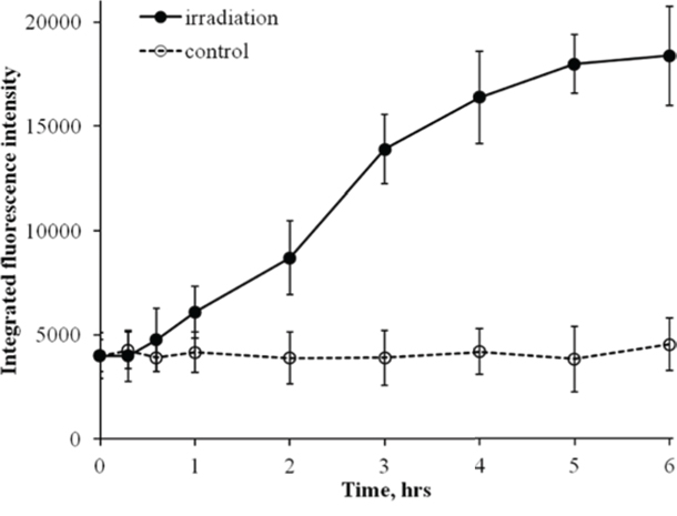 Changes in integral RAD51 fluorescence in diploid normal human fibroblasts during continuous exposure to X-ray radiation at a dose-rate of 4.5 mGy/min.