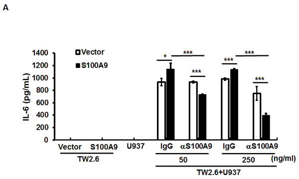The participation of NF-κB and STAT3 activation in the crosstalk between oral cancer cells and monocytes for IL-6 production.