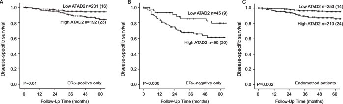 ATAD2 is a prognostic marker in subgroups of endometrial cancer.