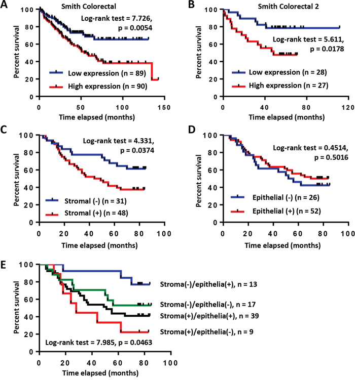 High expression of COL6A3 mRNA and protein is associated with poor prognosis of colon cancer patients.