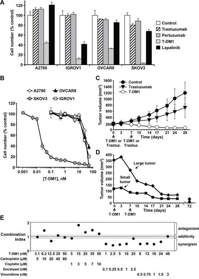 Identification Of Therapeutic Targets In Ovarian Cancer Through Active Tyrosine Kinase Profiling Oncotarget