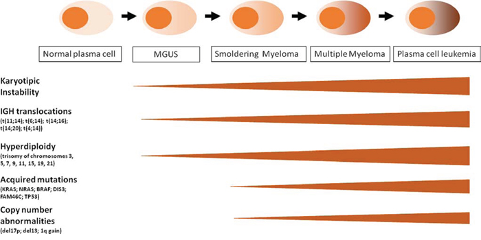 Schematic representation of MM progression and oncogenic events along the four clinical phases: MGUS, SMM, MM, PCL. See details in the text.