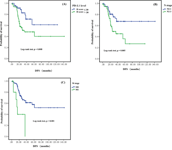 Kaplan-Meier curves for disease-freee survival (DFS) between different groups in sugically resected pulmonary lymphoepithelioma-like carcinom.