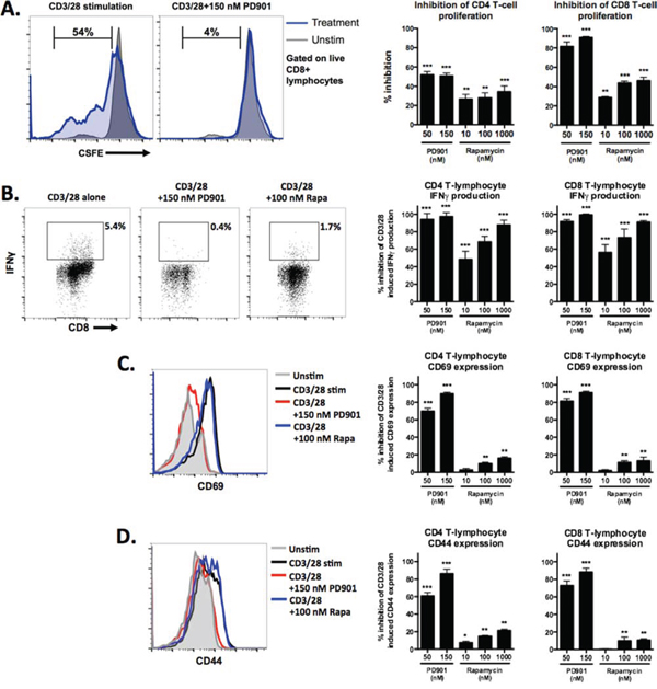 Effects of MEK and mTOR inhibition on the proliferation and activation of stimulated T-cells.