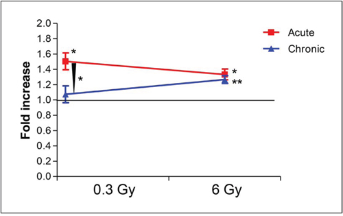 Comparison of fold increases of percent ORO-stained aortic area over sham-irradiated controls between high (x rays) and low dose-rate (gamma rays) groups.