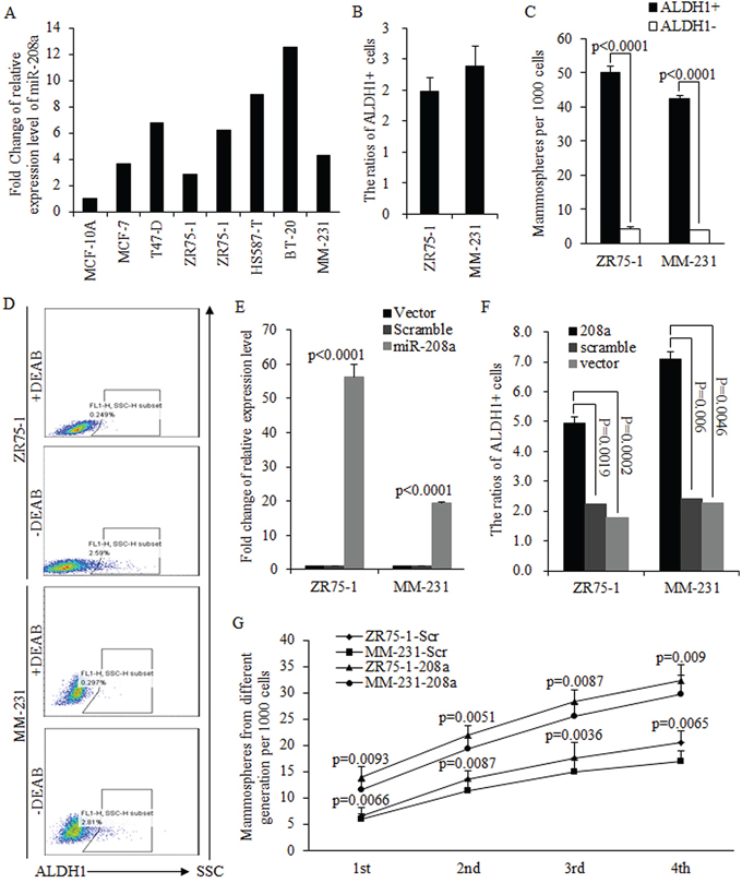 MiR-208a promotes the self-renewal ability of breast cancer stem cells.