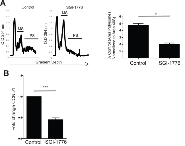 Pharmacological inhibition of PIM1 suppresses polysomal mRNA expression and mRNA translation of CCND1 in Ph+ leukemia cells.