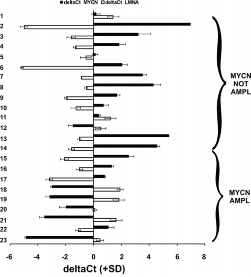 The expression of LMNA and MYCN are inversely correlated in NB human biopsies.