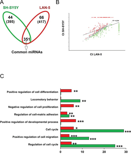 Functional analysis of miRNA target genes in LAN-5 and SH-SY5Y cell lines.