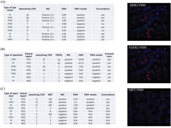 Validation of nanostring CNV 21-gene assay.