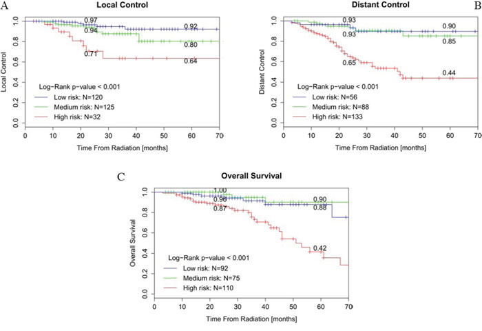 Kaplan-Meier curves for patients stratified by nomogram-predicted survival.
