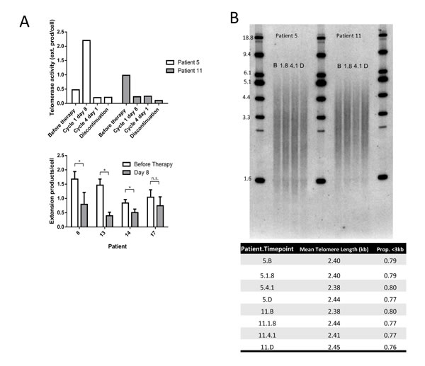 Perifosine reduces telomerase enzymatic activity but does not affect mean telomere length in human CLL.