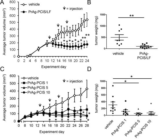 PrAg-PCIS toxin is a potent cytotoxic agent for HeLa tumor xenografts.