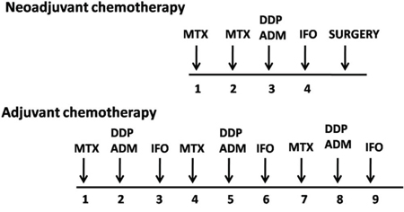 The chemotherapeutic agents and the treatment protocol of 454 patients.