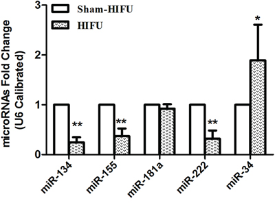 HIFU treatment caused the differential expressions of tumor tissue's miRNAs.